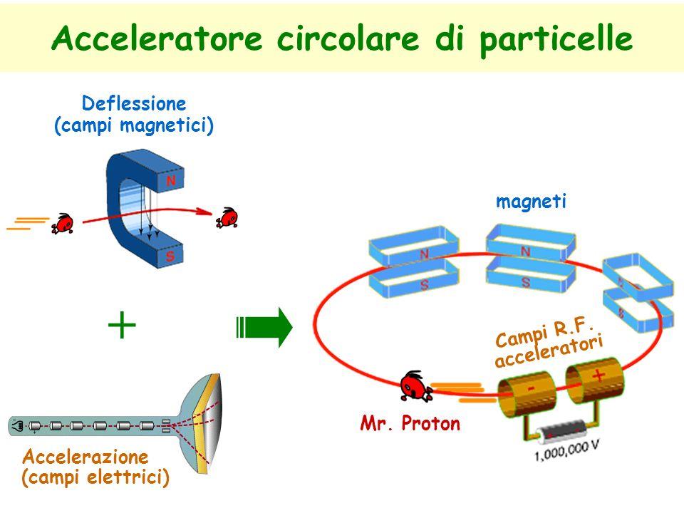 Acceleratore circolare di particelle + Accelerazione (campi elettrici) Deflessione (campi magnetici) magneti Campi R.F.