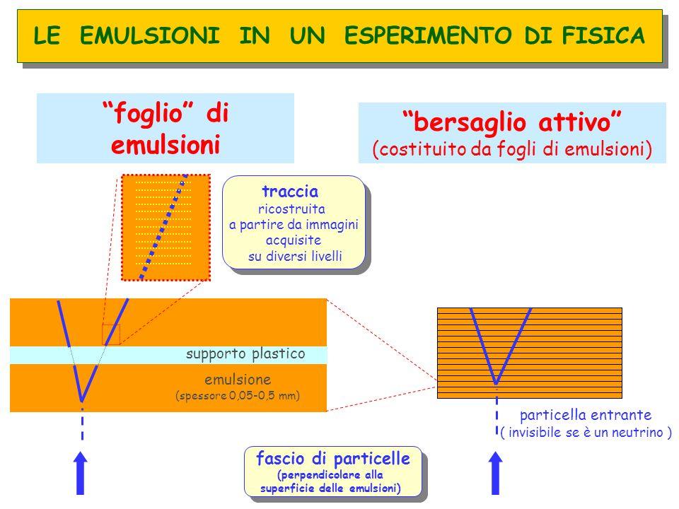 fascio di particelle (perpendicolare alla superficie delle emulsioni) fascio di particelle (perpendicolare alla superficie delle emulsioni) bersaglio