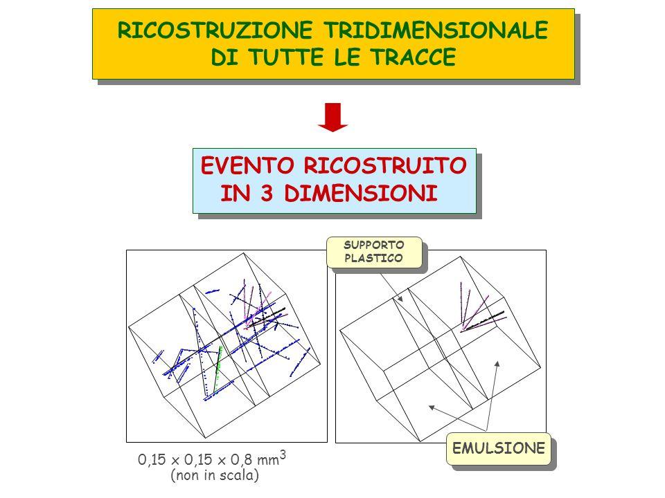 EVENTO RICOSTRUITO IN 3 DIMENSIONI EVENTO RICOSTRUITO IN 3 DIMENSIONI 0,15 x 0,15 x 0,8 mm 3 (non in scala) EMULSIONE SUPPORTO PLASTICO SUPPORTO PLASTICO RICOSTRUZIONE TRIDIMENSIONALE DI TUTTE LE TRACCE