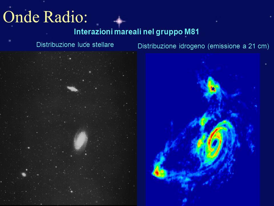 Onde Radio: Interazioni mareali nel gruppo M81 Distribuzione luce stellare Distribuzione idrogeno (emissione a 21 cm)