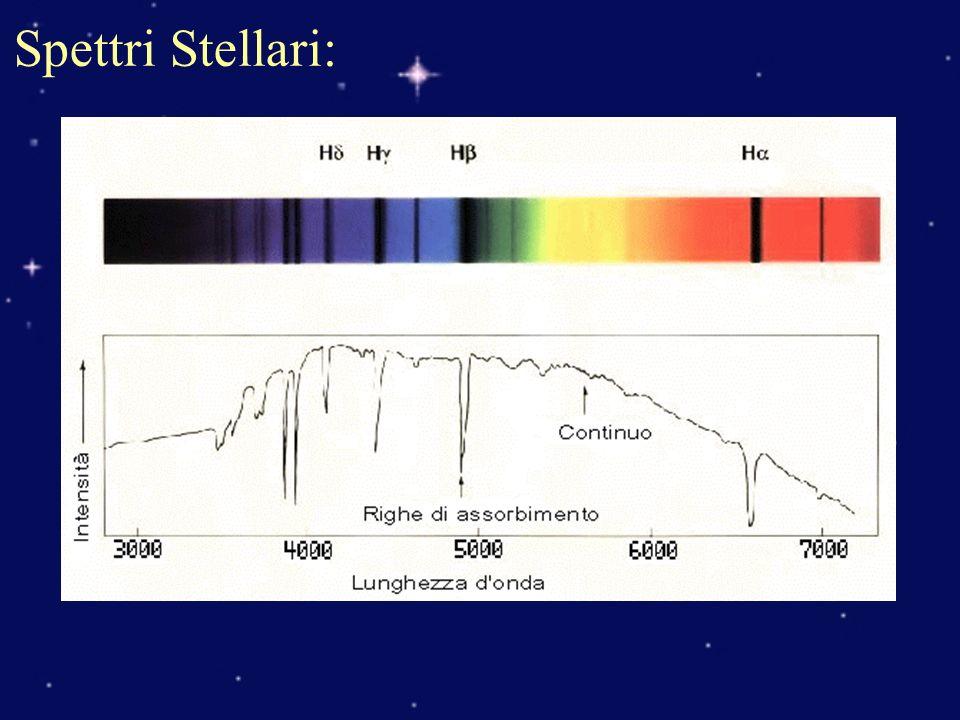 Spettri Stellari: