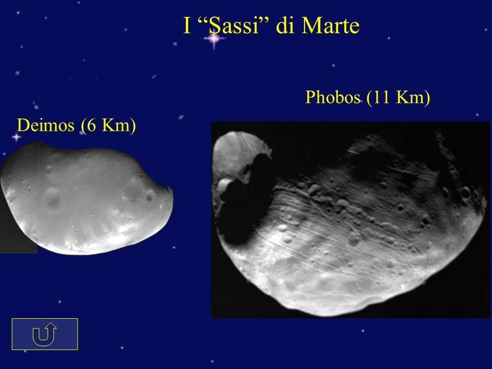 I Sassi di Marte Deimos (6 Km) Phobos (11 Km)