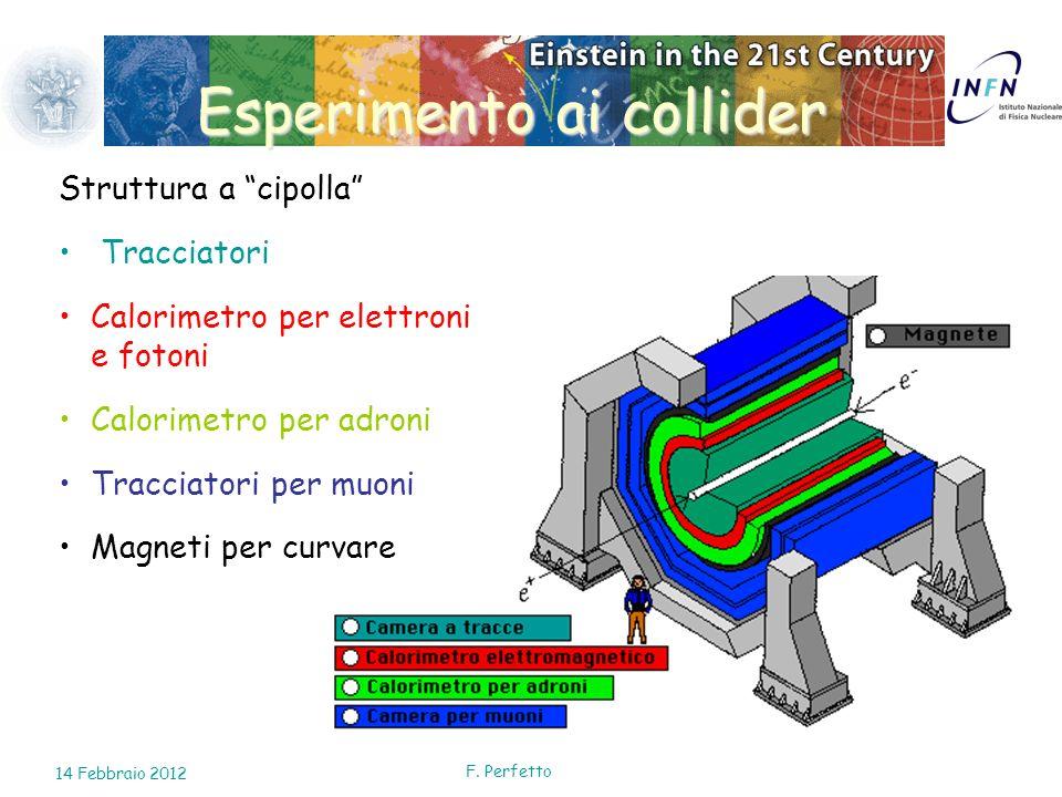 Esperimento ai collider Struttura a cipolla Tracciatori Calorimetro per elettroni e fotoni Calorimetro per adroni Tracciatori per muoni Magneti per cu