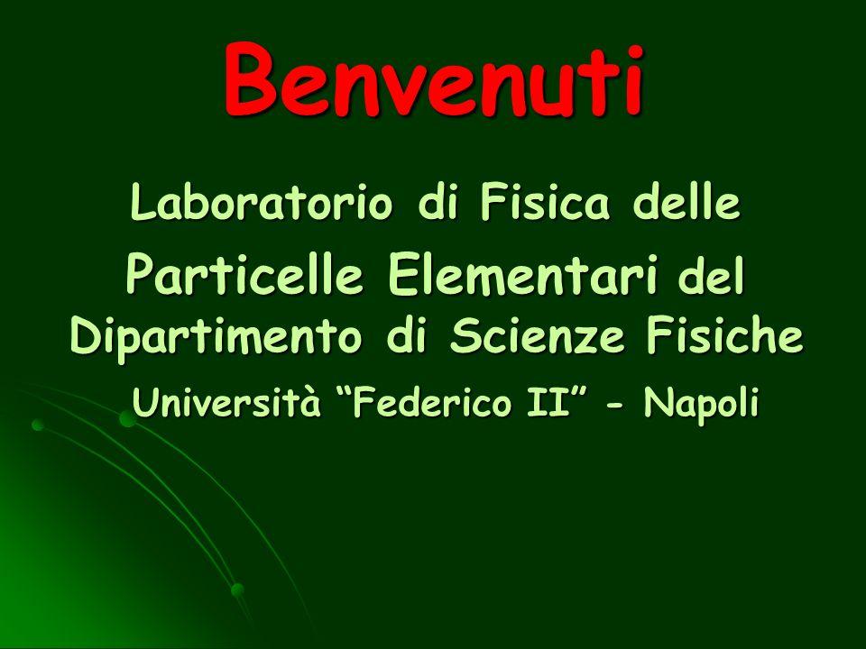 Benvenuti Laboratorio di Fisica delle Particelle Elementari del Dipartimento di Scienze Fisiche Università Federico II - Napoli Università Federico II