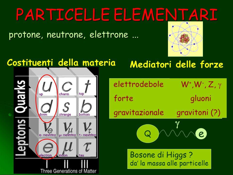 PARTICELLE ELEMENTARI protone, neutrone, elettrone... Mediatori delle forze Costituenti della materia elettrodebole forte gravitazionale Q e W +,W -,