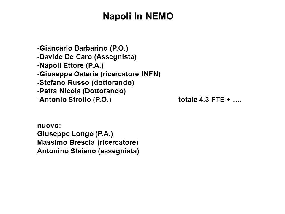 -Giancarlo Barbarino (P.O.) -Davide De Caro (Assegnista) -Napoli Ettore (P.A.) -Giuseppe Osteria (ricercatore INFN) -Stefano Russo (dottorando) -Petra