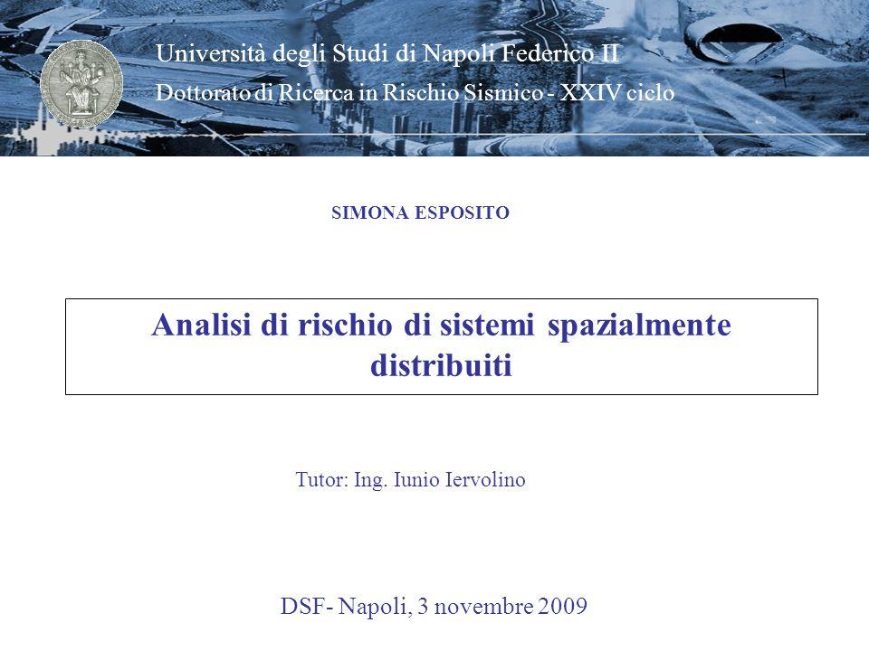 Analisi di rischio di sistemi spazialmente distribuiti SIMONA ESPOSITO DSF- Napoli, 3 novembre 2009 Università degli Studi di Napoli Federico II Dotto
