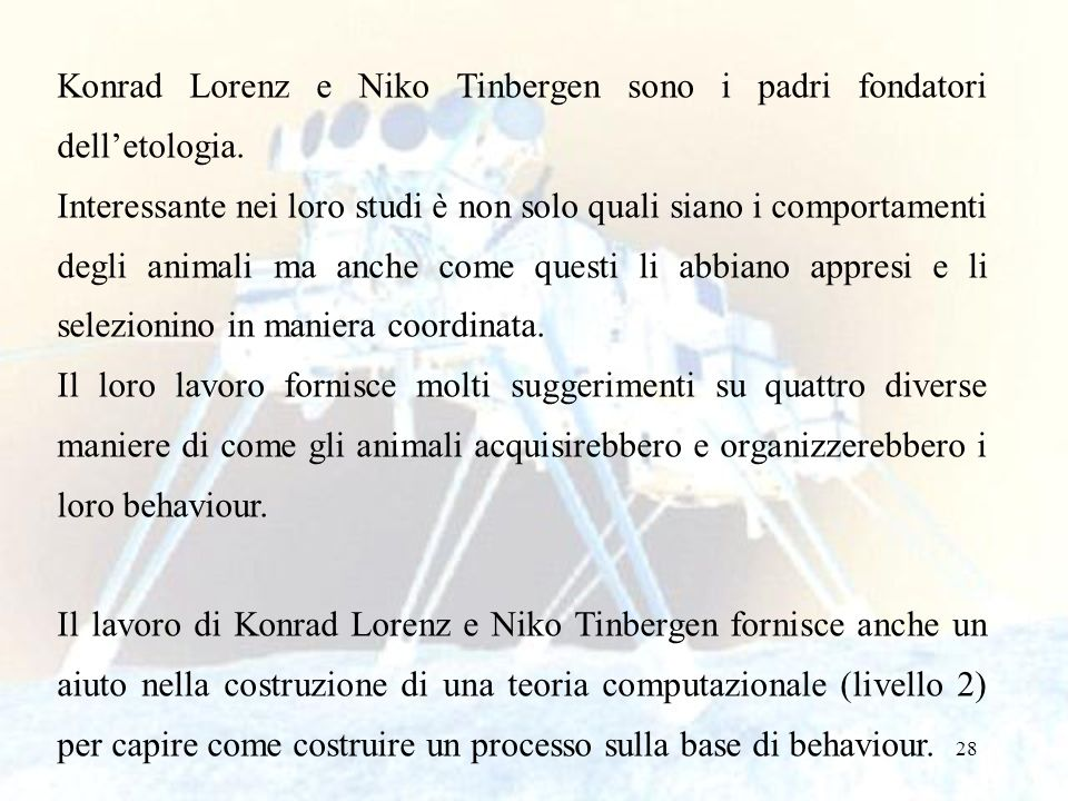 28 Konrad Lorenz e Niko Tinbergen sono i padri fondatori delletologia. Interessante nei loro studi è non solo quali siano i comportamenti degli animal