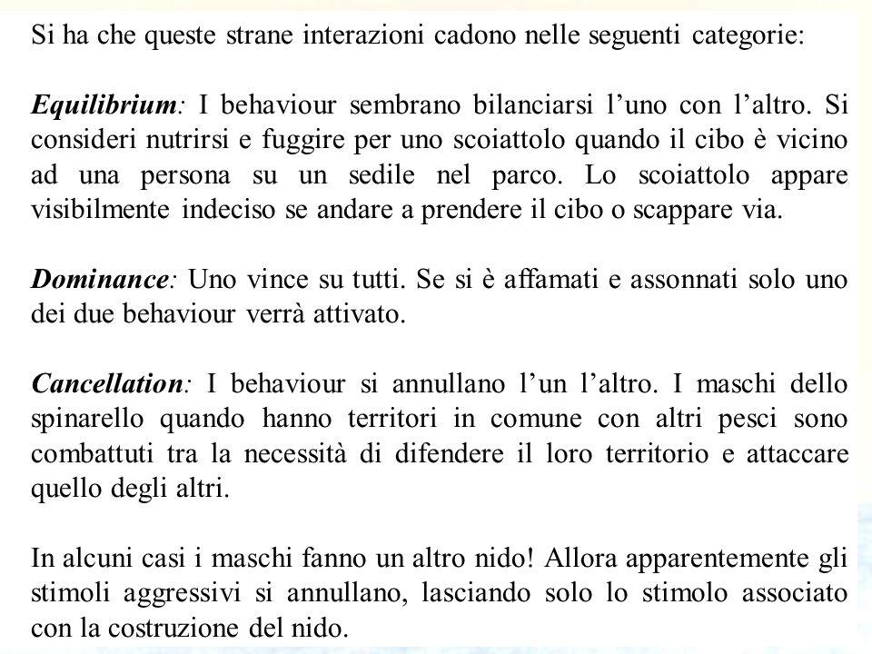 53 Si ha che queste strane interazioni cadono nelle seguenti categorie: Equilibrium: I behaviour sembrano bilanciarsi luno con laltro. Si consideri nu