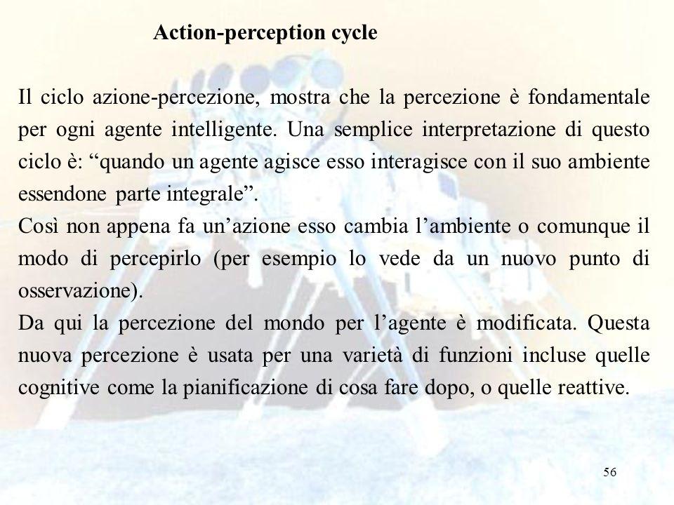 56 Action-perception cycle Il ciclo azione-percezione, mostra che la percezione è fondamentale per ogni agente intelligente. Una semplice interpretazi