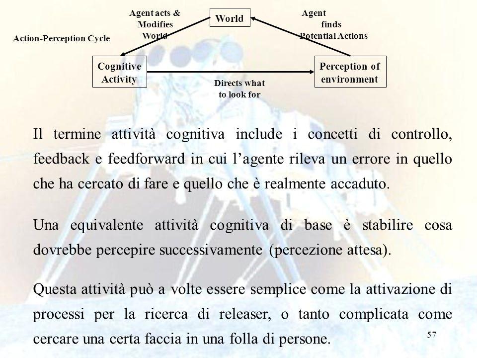 57 Il termine attività cognitiva include i concetti di controllo, feedback e feedforward in cui lagente rileva un errore in quello che ha cercato di f