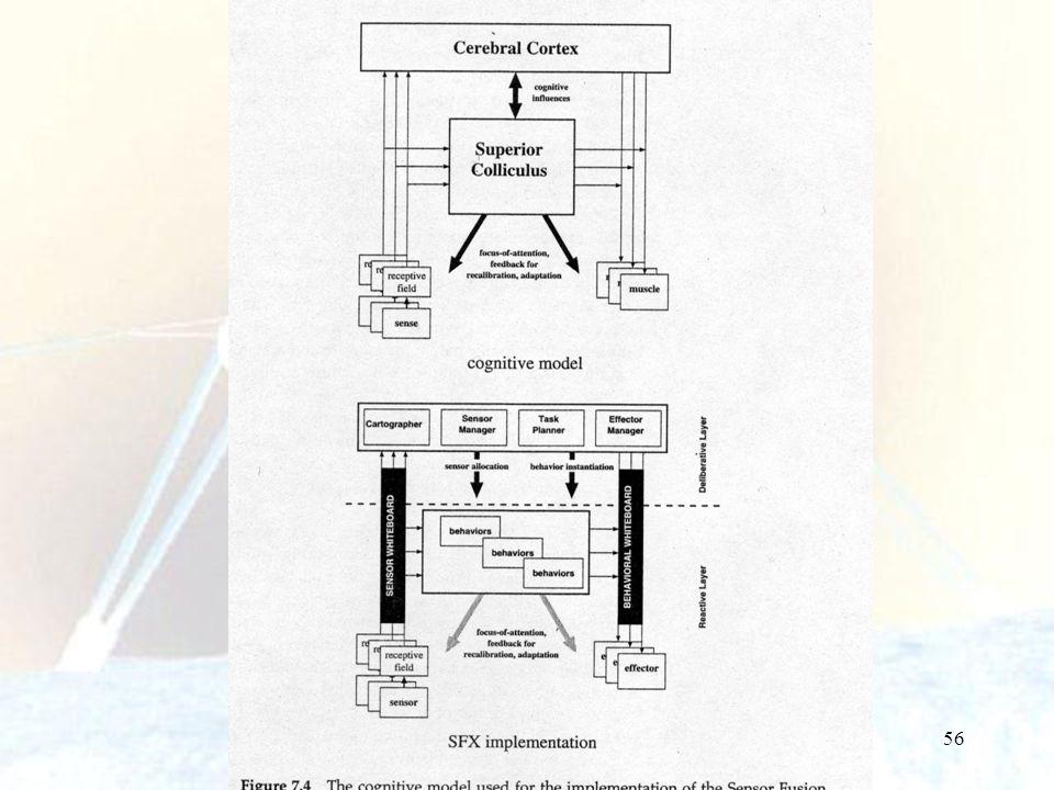 57 In SFX le funzioni equivalenti nel collicolo superiore sono implementate nello strato reattivo e le attività corticali nello strato deliberativo.