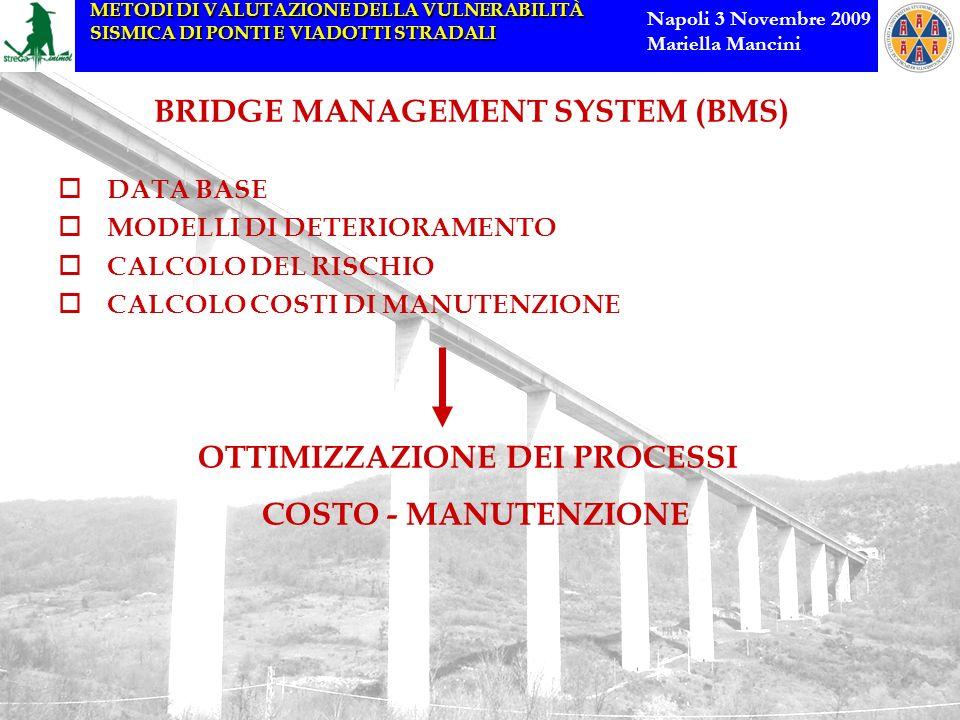 METODI DI VALUTAZIONE DELLA VULNERABILITÀ SISMICA DI PONTI E VIADOTTI STRADALI Napoli 3 Novembre 2009 Mariella Mancini BRIDGE MANAGEMENT SYSTEM (BMS)