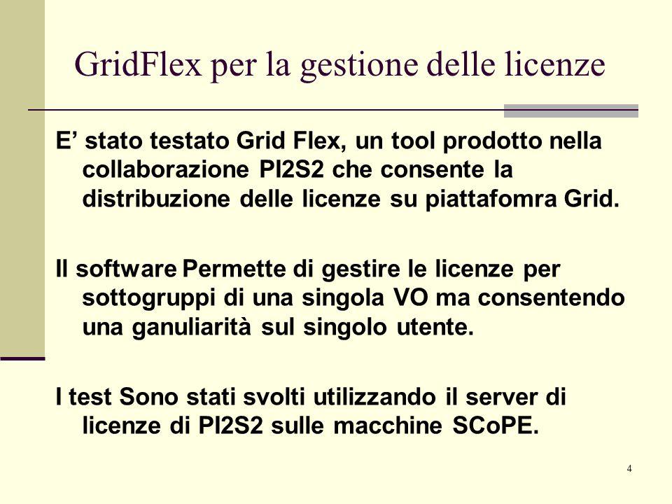 4 E stato testato Grid Flex, un tool prodotto nella collaborazione PI2S2 che consente la distribuzione delle licenze su piattafomra Grid. Il software