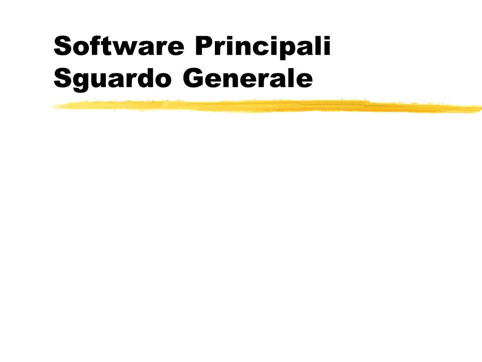 Software Principali Sguardo Generale