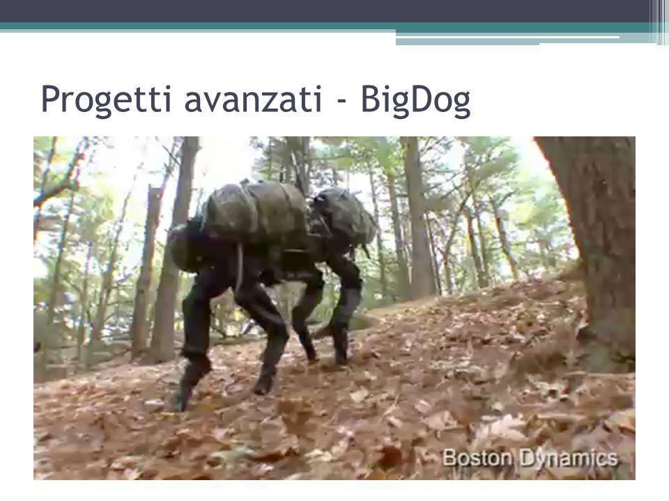 Progetti avanzati - BigDog