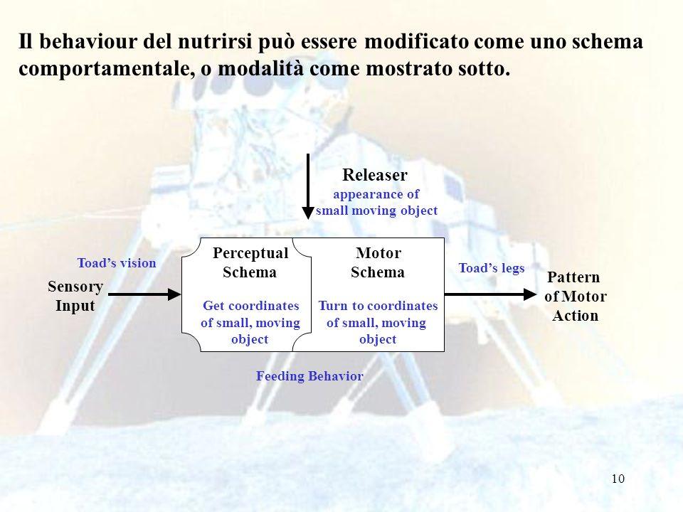10 Il behaviour del nutrirsi può essere modificato come uno schema comportamentale, o modalità come mostrato sotto. Sensory Input Pattern of Motor Act
