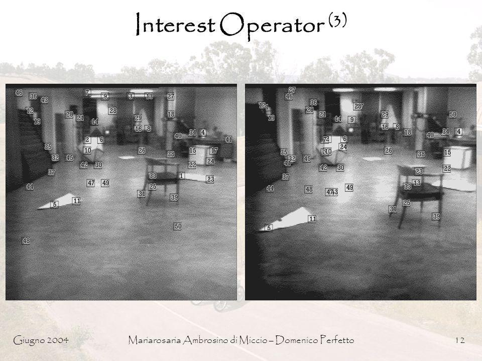 Giugno 2004Mariarosaria Ambrosino di Miccio – Domenico Perfetto12 Interest Operator (3)