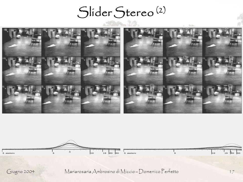 Giugno 2004Mariarosaria Ambrosino di Miccio – Domenico Perfetto17 Slider Stereo (2)