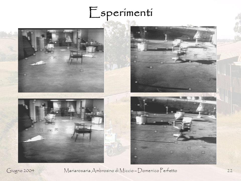 Giugno 2004Mariarosaria Ambrosino di Miccio – Domenico Perfetto22 Esperimenti