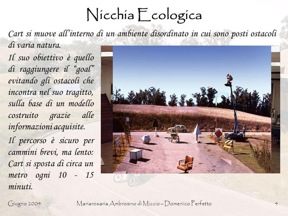 Giugno 2004Mariarosaria Ambrosino di Miccio – Domenico Perfetto45 Campi di Potenziale: Repulsivo PFields.Repulsion( Obstacle_Angle, Obstacle_Strenght ) If (Obstacle_Strenght > MINSTRENGHT) Vector.Direction = Obstacle_Angle + 180° Vector.Magnitude = Obstacle_Strenght – MINSTRENGHT Else Vector.Magnitude = 0 End If Return Vector;