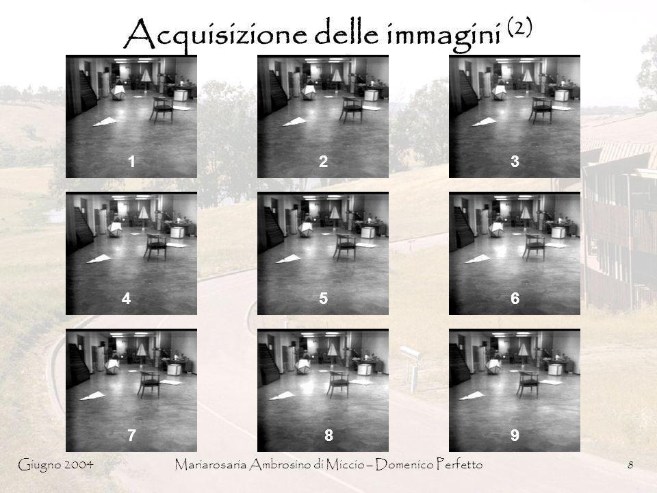 Giugno 2004Mariarosaria Ambrosino di Miccio – Domenico Perfetto8 Acquisizione delle immagini (2) 123 456 789