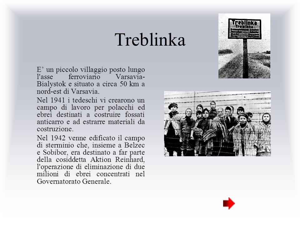 Treblinka E un piccolo villaggio posto lungo l'asse ferroviario Varsavia- Bialystok e situato a circa 50 km a nord-est di Varsavia. Nel 1941 i tedesch