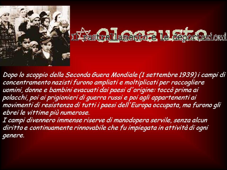 GERMANIA: - Legge 15 settembre 1935 - Protezione del sangue e dell onore tedesco.Legge 15 settembre 1935 ITALIA: - 1936 - La necessità di una coscienza razziale in Italia.1936 ITALIA: - 14/25 luglio 1938 - Manifesto degli scienziati razzisti.14/25 luglio 1938 ITALIA: - Legge 5 settembre 1938 - Provvedimenti per la difesa della razzaLegge 5 settembre 1938 nella scuola fascista.