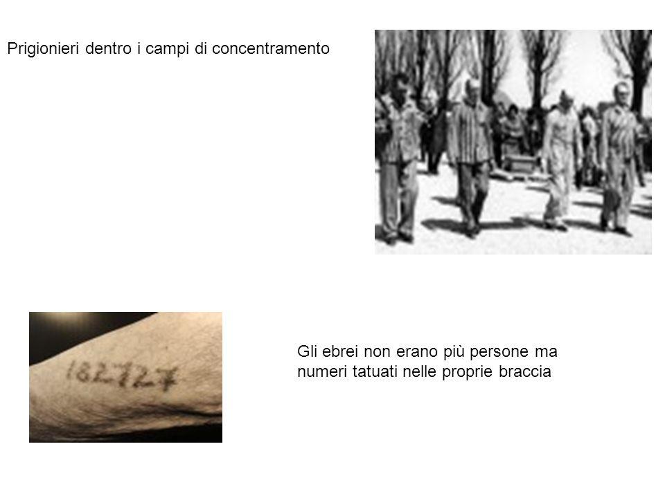 Prigionieri dentro i campi di concentramento Gli ebrei non erano più persone ma numeri tatuati nelle proprie braccia