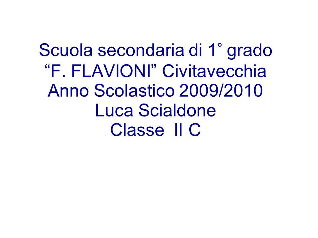 Scuola secondaria di 1° grado F. FLAVIONI Civitavecchia Anno Scolastico 2009/2010 Luca Scialdone Classe II C