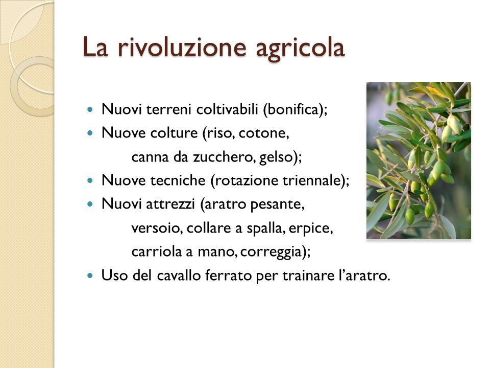 La rivoluzione agricola Nuovi terreni coltivabili (bonifica); Nuove colture (riso, cotone, canna da zucchero, gelso); Nuove tecniche (rotazione trienn