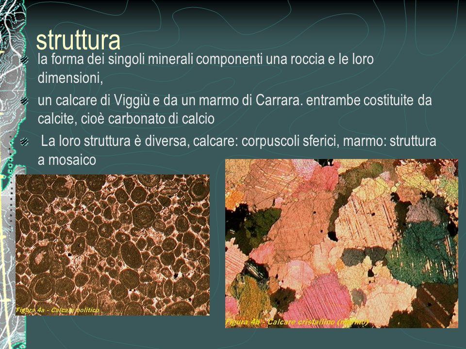 struttura la forma dei singoli minerali componenti una roccia e le loro dimensioni, un calcare di Viggiù e da un marmo di Carrara.