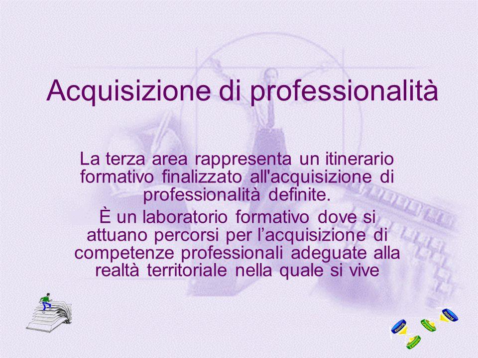 Acquisizione di professionalità La terza area rappresenta un itinerario formativo finalizzato all acquisizione di professionalità definite.