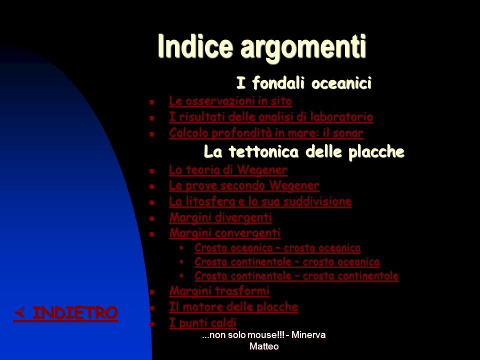 ...non solo mouse!!! - Minerva Matteo Movimenti convettivi INDIETRO INDIETRO