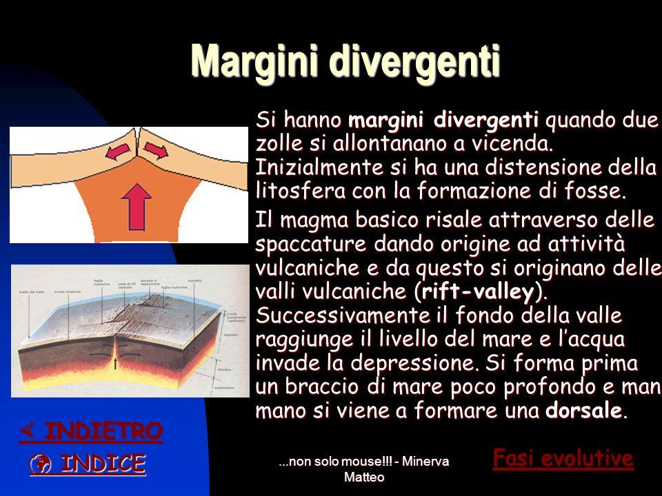 ...non solo mouse!!! - Minerva Matteo La litosfera e la sua suddivisione Secondo la teoria della tettonica a placche, la litosfera è suddivisa in plac