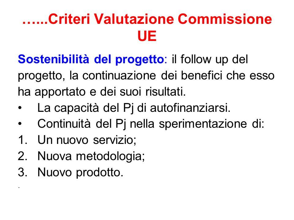 …...Criteri Valutazione Commissione UE Sostenibilità del progetto: il follow up del progetto, la continuazione dei benefici che esso ha apportato e de