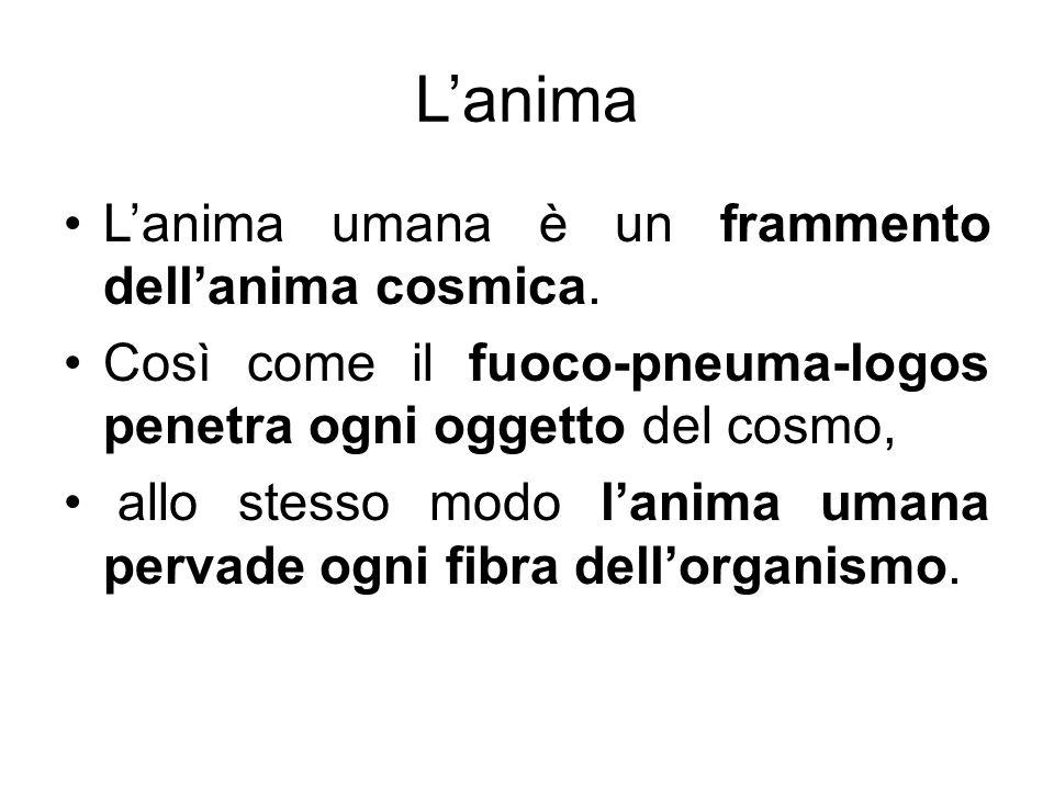 Lanima Lanima umana è un frammento dellanima cosmica. Così come il fuoco-pneuma-logos penetra ogni oggetto del cosmo, allo stesso modo lanima umana pe