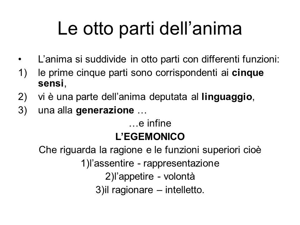 Le otto parti dellanima Lanima si suddivide in otto parti con differenti funzioni: 1)le prime cinque parti sono corrispondenti ai cinque sensi, 2)vi è