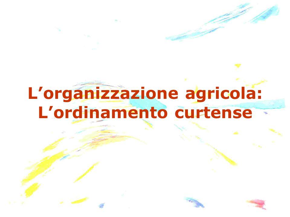 Lorganizzazione agricola: Lordinamento curtense