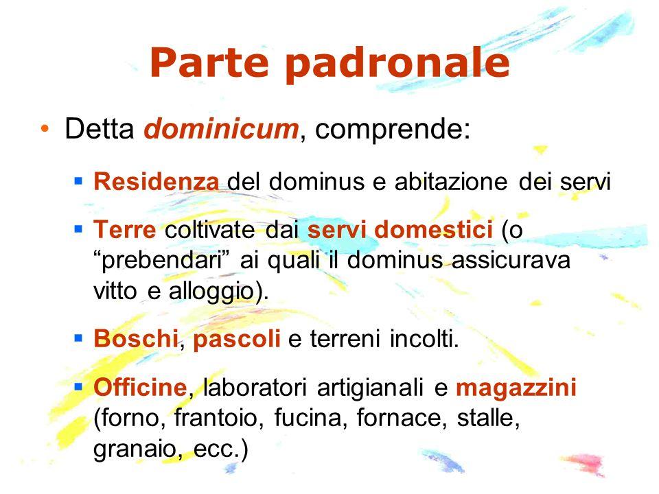 Parte padronale Detta dominicum, comprende: Residenza del dominus e abitazione dei servi Terre coltivate dai servi domestici (o prebendari ai quali il