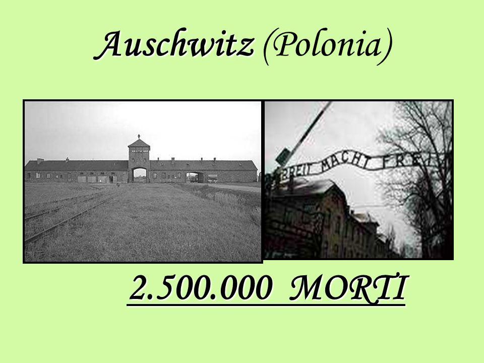 Auschwitz Auschwitz (Polonia) 2.500.000 MORTI