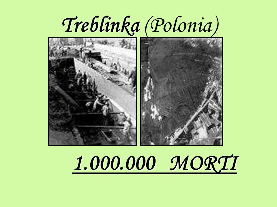Treblinka Treblinka (Polonia) 1.000.000 MORTI