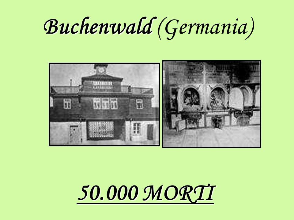 Buchenwald Buchenwald (Germania) 50.000 MORTI