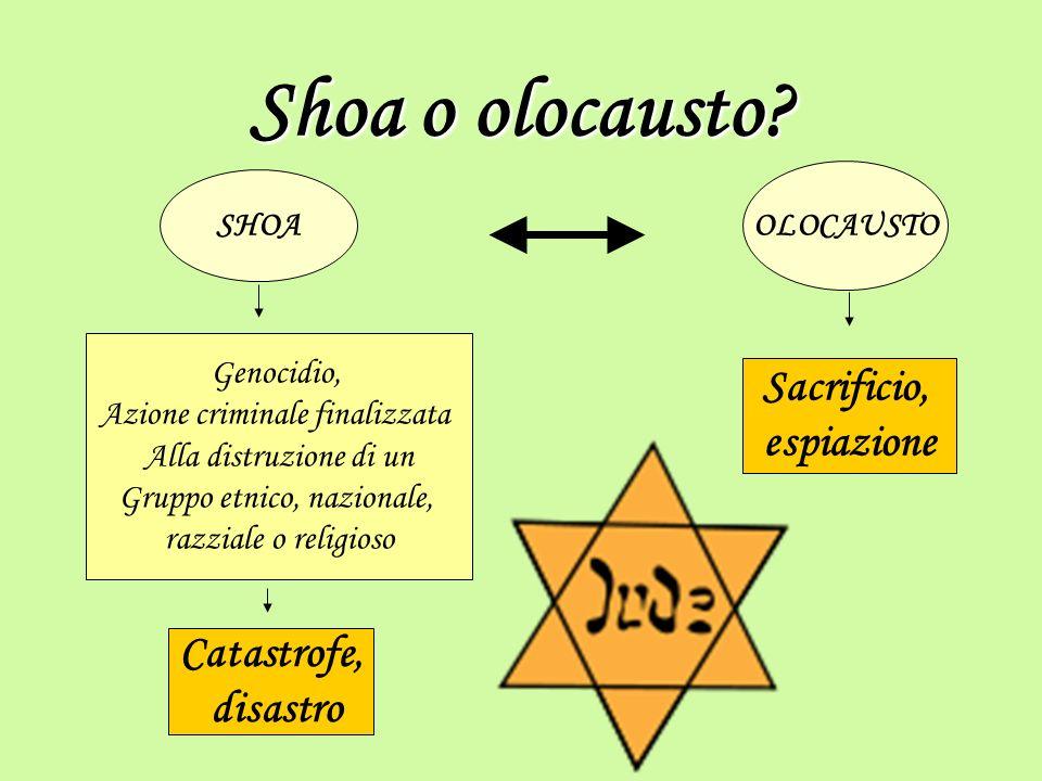 Le cause della shoa Il nazismo fece dell accusa agli ebrei uno dei propri elementi fondanti.