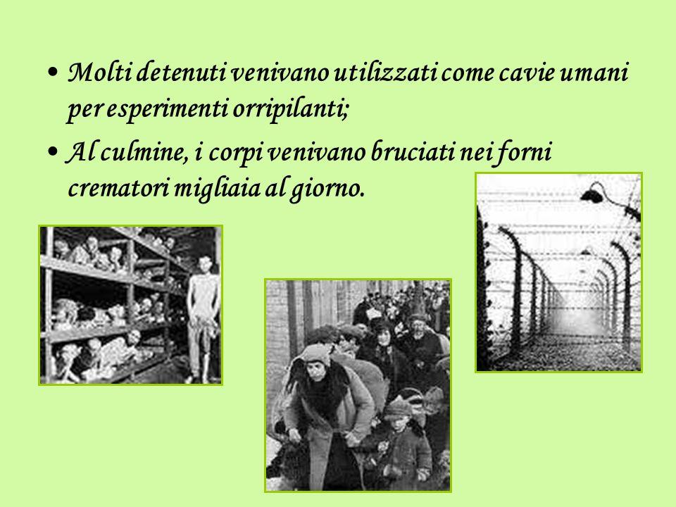 Molti detenuti venivano utilizzati come cavie umani per esperimenti orripilanti; Al culmine, i corpi venivano bruciati nei forni crematori migliaia al