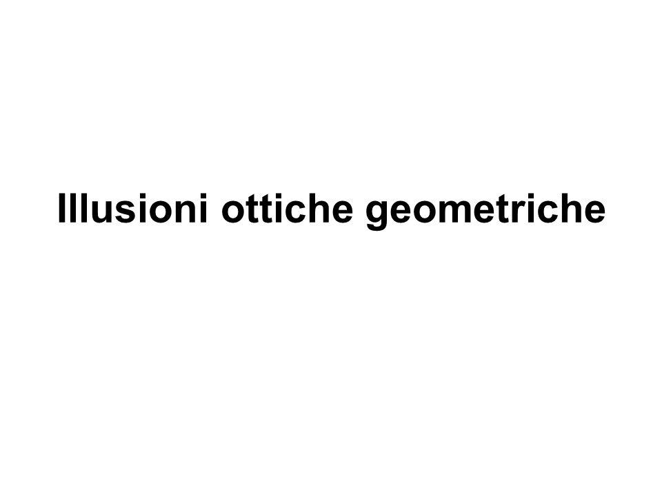 g Anche l accostamento di linee oblique con altre linee o con figure geometriche può dare origine paradossi ottici