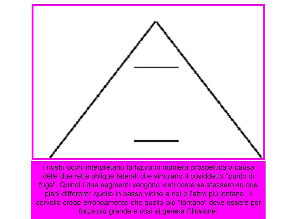 I nostri occhi interpretano la figura in maniera prospettica a causa delle due rette oblique laterali che simulano il cosiddetto
