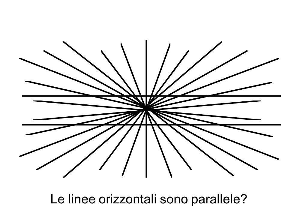 Le linee orizzontali sono parallele?