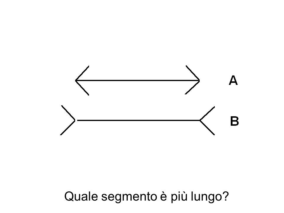 Quale segmento è più lungo?