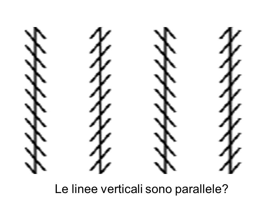 Le linee verticali sono parallele?